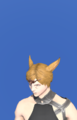 Model-Legacy Warrior Coronet-Male-Miqote.png