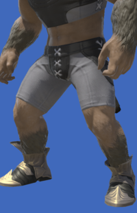 Model-Elemental Shoes of Fending-Male-Hrothgar.png
