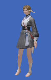Model-Far Eastern Maiden's Tunic-Female-AuRa.png