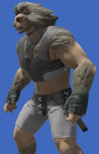 Model-Arachne Field Dressing of Scouting-Male-Hrothgar.png