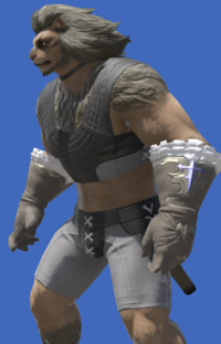 Model-Valkyrie's Gloves of Healing-Male-Hrothgar.png