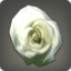 Dried White Oldrose Icon.png