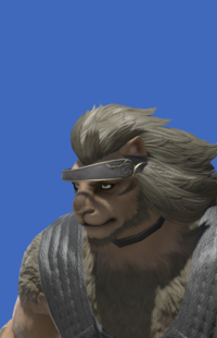 Model-Alliance Circlet of Casting-Male-Hrothgar.png