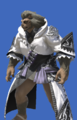 Model-Direwolf Robe of Casting-Male-Hrothgar.png