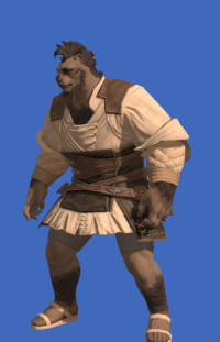 Model-Aesthete's Doublet of Crafting-Male-Hrothgar.png
