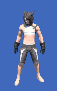 Model-YoRHa Type-55 Gloves of Maiming-Male-Miqote.png