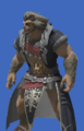 Model-Eaglebeak Coat-Male-Hrothgar.png
