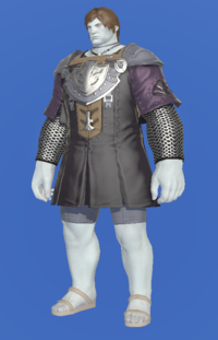 Model-Flame Sergeant's Tabard-Male-Roe.png
