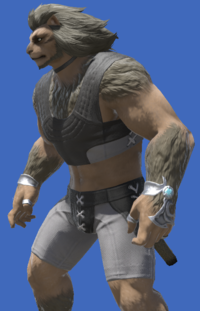Model-Bard's Ringbands-Male-Hrothgar.png