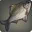 Maiden Carp Icon.png
