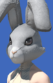 Model-Rabbit Head-Female-Elezen.png