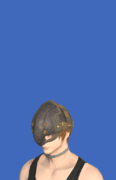 Model-Veteran's Pot Helm-Male-Hyur.png