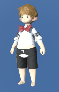Model-Bunny Bustier-Male-Lalafell.png
