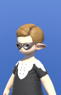 Model-Plundered Goggles-Male-Lalafell.png