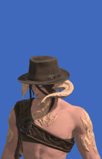 Model-Aesthete's Hat of Gathering-Male-AuRa.png