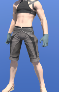 Model-Wolf Dress Gloves-Male-Miqote.png