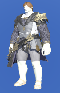 Model-Brand-new Tabard-Male-Roe.png