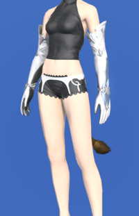 Model-Hailstorm Gloves of Healing-Female-Miqote.png