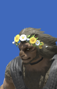 Model-Flower Crown-Male-Hrothgar.png