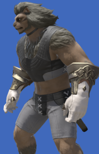 Model-Prototype Midan Gloves of Healing-Male-Hrothgar.png