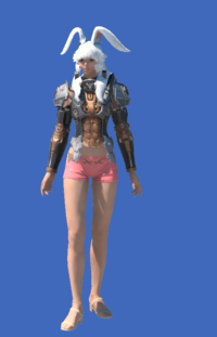 Model-Late Allagan Armor of Aiming-Female-Viera.png