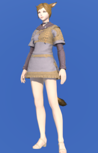 Model-Rainmaker's Tunic-Female-Miqote.png