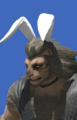 Model-Bunny Chief Crown-Male-Hrothgar.png