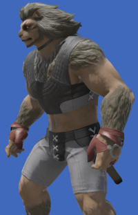 Model-Storm Private's Ringbands-Male-Hrothgar.png
