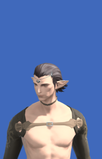 Model-Aurum Temple Chain-Male-Elezen.png