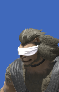 Model-Head Bandage-Male-Hrothgar.png