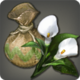 Arum Bulbs Icon.png