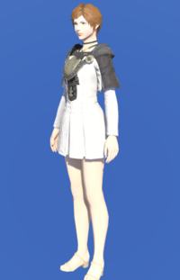 Model-Aetherial Cotton Tabard-Female-Hyur.png