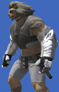 Model-Tarnished Hands of the Silver Wolf-Male-Hrothgar.png