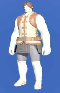 Model-Velveteen Doublet Vest of Crafting-Male-Roe.png