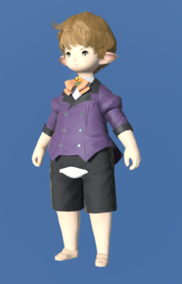Model-Witch's Coatee-Male-Lalafell.png