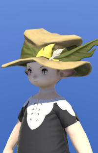 Model-Augmented Fieldking's Hat-Male-Lalafell.png