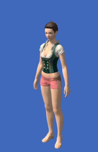 Model-Dirndl's Bodice-Female-Hyur.png