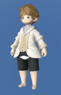 Model-Plundered Bliaud-Male-Lalafell.png