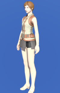 Model-Velveteen Doublet Vest of Crafting-Female-Hyur.png