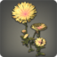 Dandelion Plot Icon.png