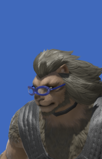 Model-Thick-rimmed Glasses-Male-Hrothgar.png
