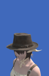 Model-Aesthete's Hat of Gathering-Female-AuRa.png