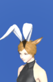 Model-Bunny Chief Crown-Female-Miqote.png