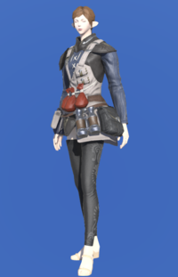 Model-Royal Volunteer's Gambison of Healing-Female-Elezen.png