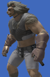 Model-Bronze Mitt Gauntlets-Male-Hrothgar.png