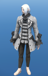 Model-High House Justaucorps-Male-Elezen.png