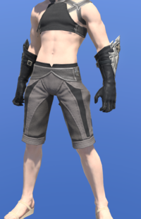 Model-Augmented Shire Philosopher's Gloves-Male-Miqote.png