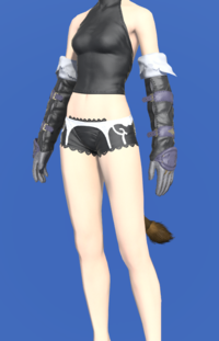 Model-Brand-new Gloves-Female-Miqote.png
