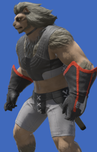Model-Lominsan Officer's Gloves-Male-Hrothgar.png