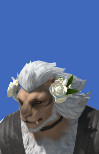 Model-Veil of Eternal Passion-Male-Hrothgar.png